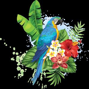 image de perroquet pour icone service traiteur de toulon